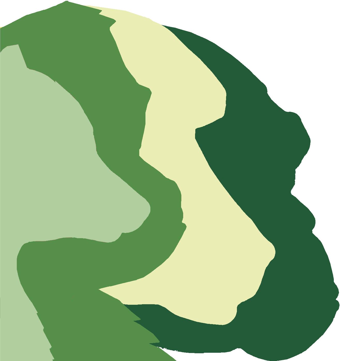mp_logo_notext.png